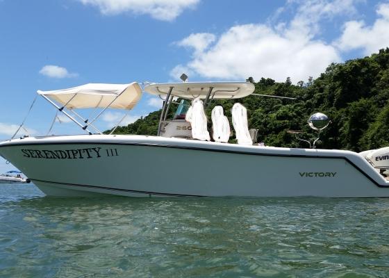 /barcos/lancha-victory-260/